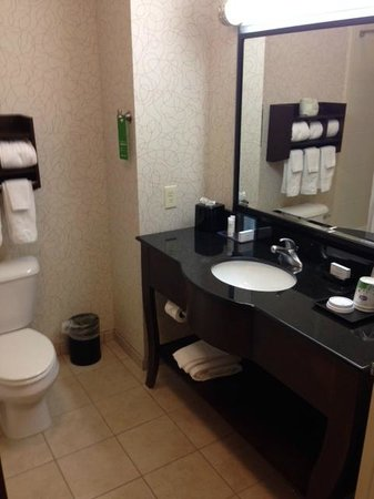 Hampton Inn Richmond-Airport : Bathroom