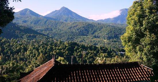 Manah Liang Bungalow : Mountain View