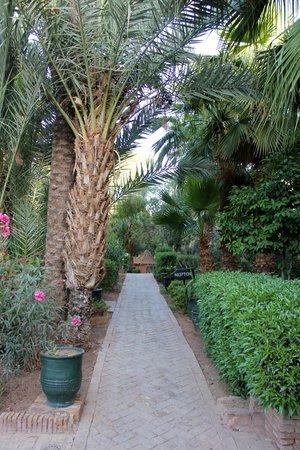 Hotel Ouarzazate Le Riad : garden
