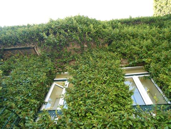 As Janelas Verdes: retro hotel
