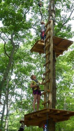 The Adventure Park at Storrs: adventure park