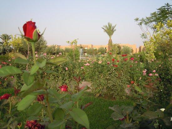 Club Dar Atlas : les jardins