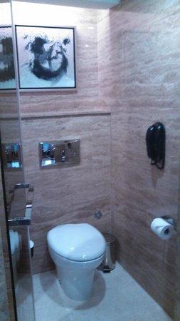 Hilton Beijing Wangfujing: toilet area