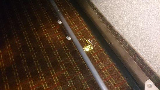 Days Inn Columbia: Condom wrapper.