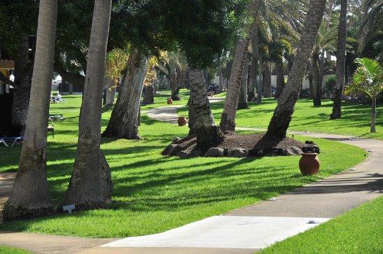 Robinson Club Jandia Playa: Garten des Clubs