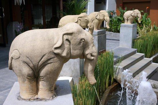 Pavilion Samui Villas & Resort: Elephants