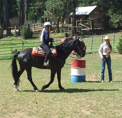 Coffee Creek Ranch: Arena Riding