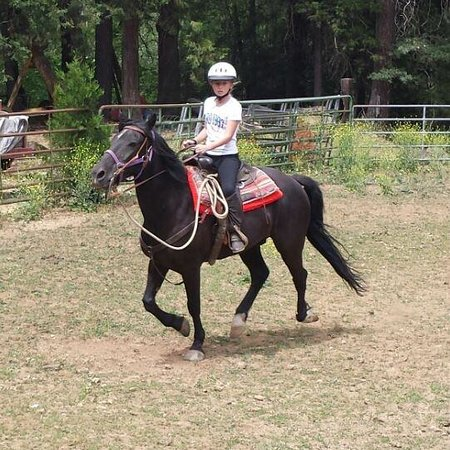 Coffee Creek Ranch: Riding