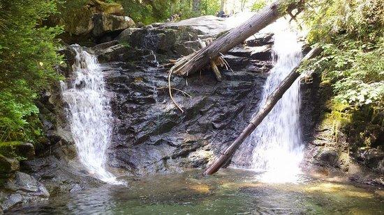 Coffee Creek Ranch: Beautiful Area - Riding Trai