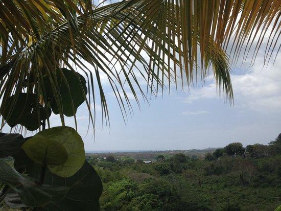 Surf 787 Guest Villa: Beautiful view