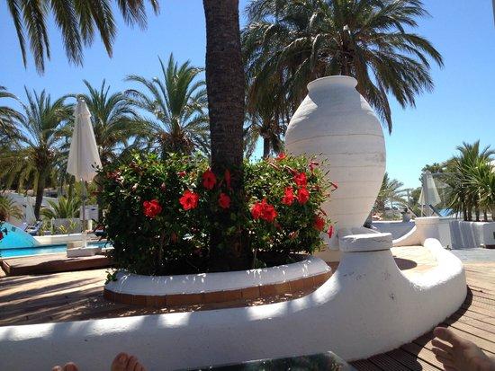Maritim Hotel Galatzo : Pool area