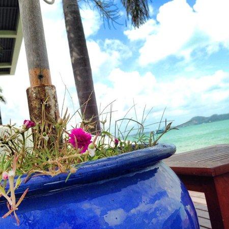Serenity Resort & Residences Phuket: poolside