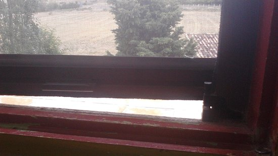 Hotel El Capricho de Goya: mosquitera