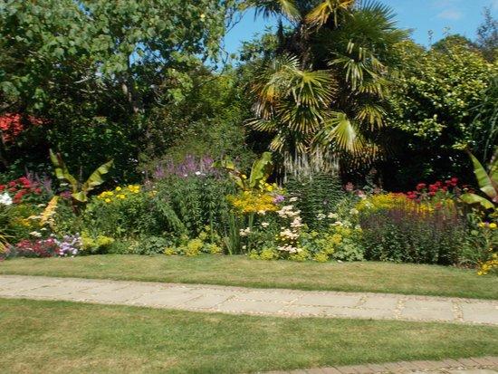 Abbotsbury Subtropical Gardens: gardens