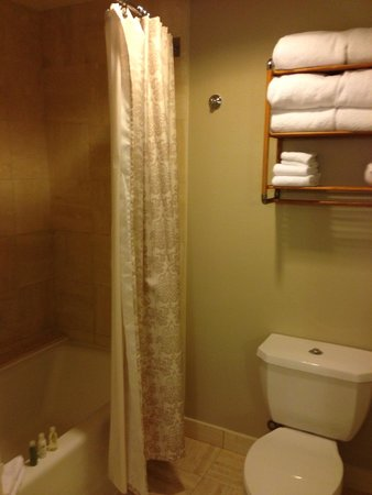 Disney's Grand Floridian Resort & Spa: Bathroom