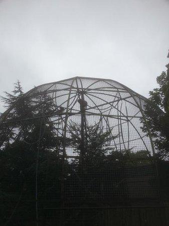 Edinburgh Zoo: more climbing