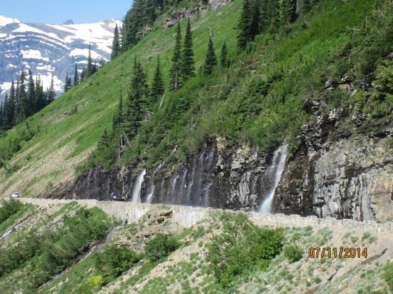 Weeping Wall Picture Of Garden Wall Glacier National Park Tripadvisor