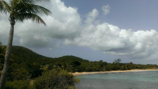 W Retreat & Spa Vieques: Beach view from hotel grounds