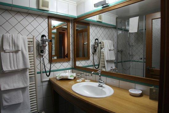 Domaine De Chateauvieux : Bathroom