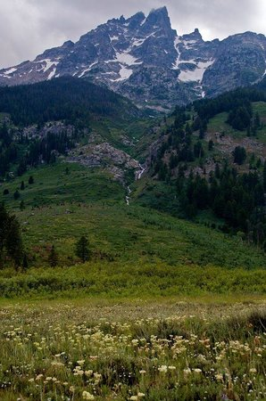 Jackson Hole Eco Tour Adventures : Mountain scene from Grand Teton Tour