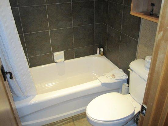 Fox Hotel & Suites : Batroom