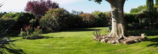 Mas du Clos de l'Escarrat : lawn garden