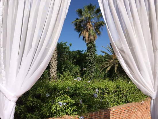 Hotel Argana : View from the cabana