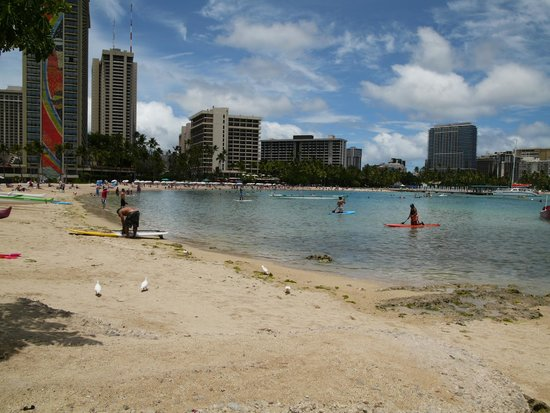 Lotus Honolulu at Diamond Head: Great beaches close by