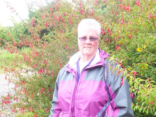 Ballinacarrow, Ireland: Anna by the Fuchsia