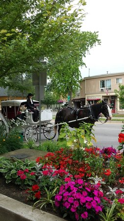 Post House Inn : Carriage Ride