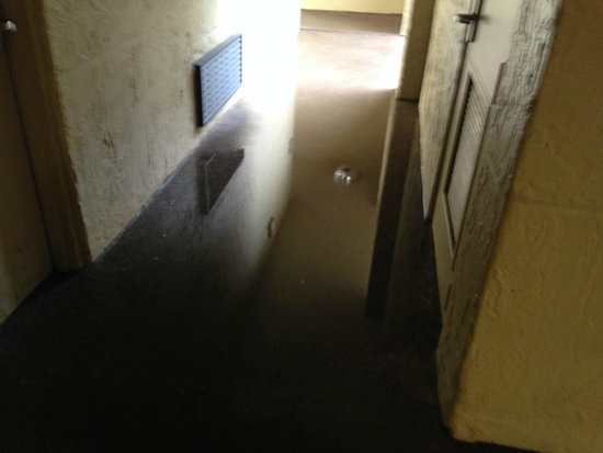Doubletree by Hilton Orlando at SeaWorld: Flooded areas- quite common place after a down pour