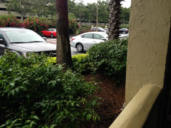 Doubletree by Hilton Orlando at SeaWorld: Probably the worst rooms at the hotel no real privacy and the only view is the carpark