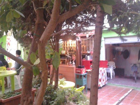 The Garden Backpacker : Bar/outdoor area