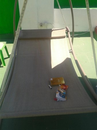 The Garden Backpacker : the hammock on the roof terrace