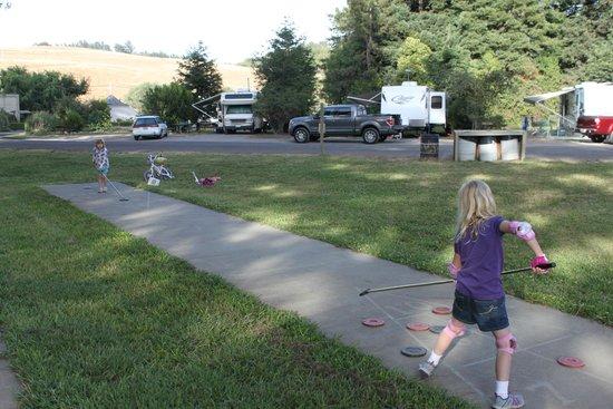 Olema Campground: shuffleboard