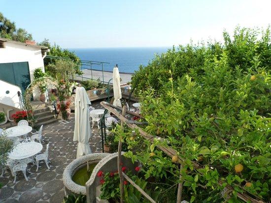 Hotel Smeraldo: vue de la chambre un peu cachée par la végétation