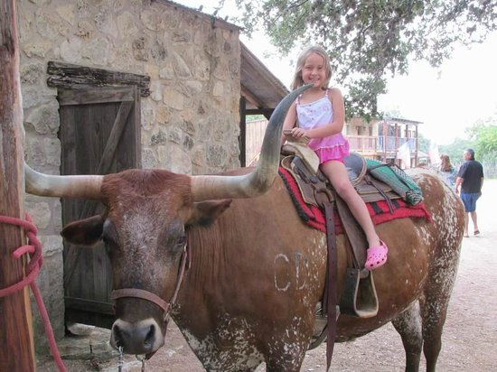 Enchanted Springs Ranch: Sitting astride the longhorn