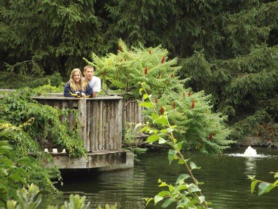 Niagara Parks Botanical Gardens: Water area