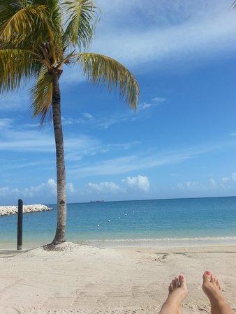 Hotel Riu Palace Jamaica: Homemade postcard shot