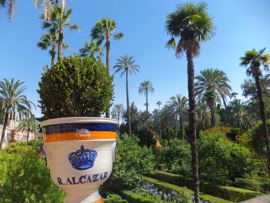 Hotel Becquer: l'Alcazar et ses beaux jardins