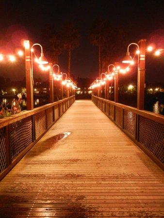 Disney's Coronado Springs Resort: Bridge at Night