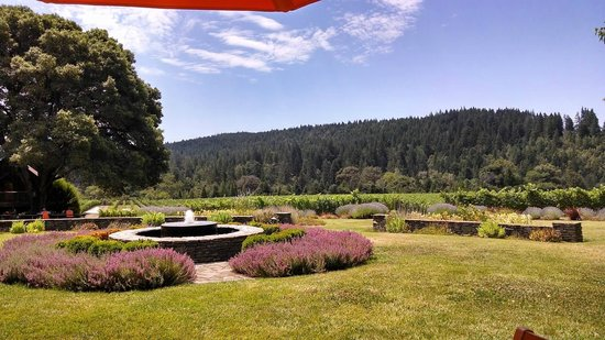 Goldeneye Winery: Awesome garden and views