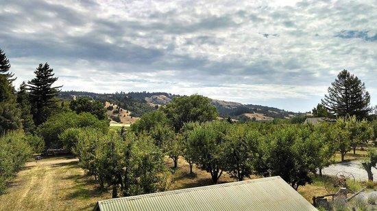 Philo, Kaliforniya: beautiful valley