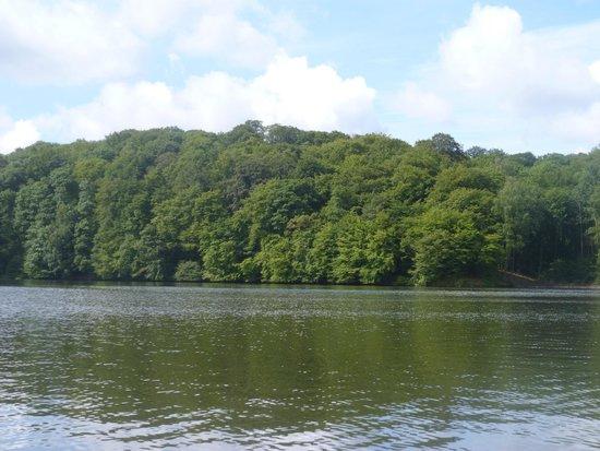 Les Cottages de ValJoly : vue sur le lac