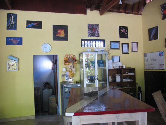 Euro Dive Bali : Inside the dive center