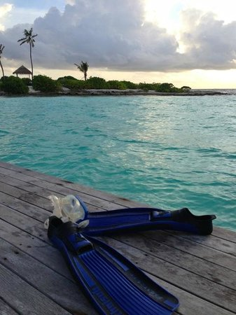 Gili Lankanfushi Maldives : snorkeling