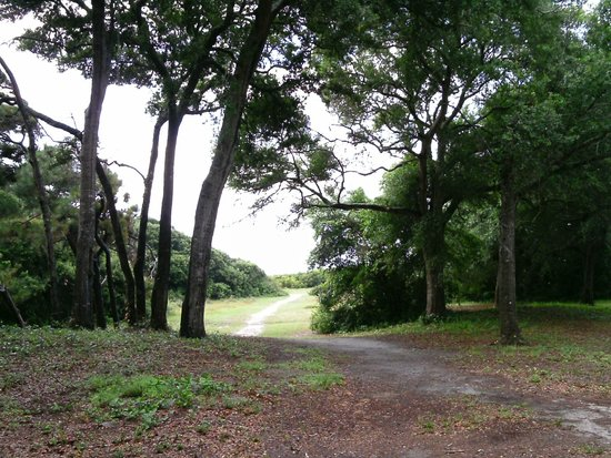 along numerous boardwalk cabins quantum park equestrian which are trails my myrtle state can review be campground the rented sc there to addition in a discovery bathhouses beach and shoreline