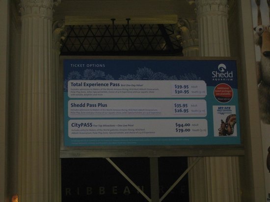 Shedd Aquarium : there are more options