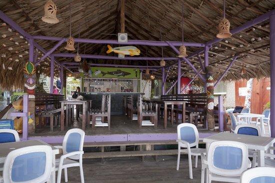 Sharks Beach Bar El Yaque: el sharks