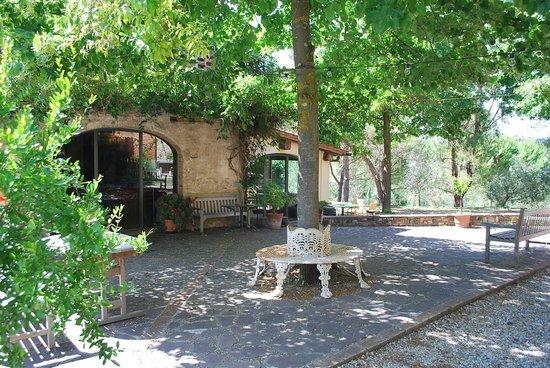 Il Grande Prato : Shaded courtyard